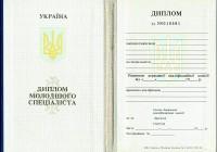 Диплом молодшого спеціаліста 1993 года